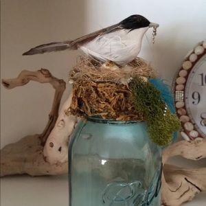 Turquoise Blue Glass Ball MASON JAR Birds Nest